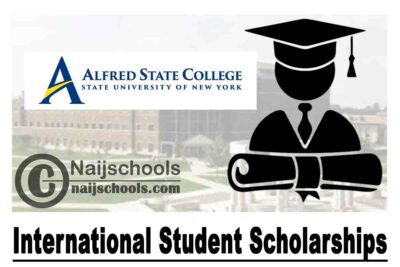 Fencing Scholarships For International Students In Usa